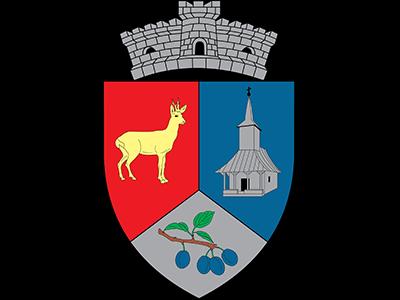 Primaria Valea Chioarului